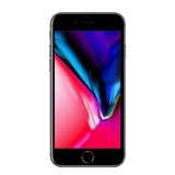 iPhone 8 Plus 256GB (Other)
